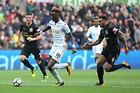 Tammy Abraham of Swansea City is chased by Jamaal Lascelles of Newcastle United as he goes towards goal during the Premier League match between Swansea City and Newcastle United at The Liberty Stadium, Swansea, Wales, UK. Sunday 10 September 2017