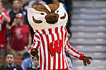 Wisconsin Badgers mascot Bucky Badger during the fourth-round game in the NCAA college basketball tournament against the Baylor Bears Thursday, March 27, 2014 in Anaheim, California. The Badgers won 69-52. (Photo by David Stluka)