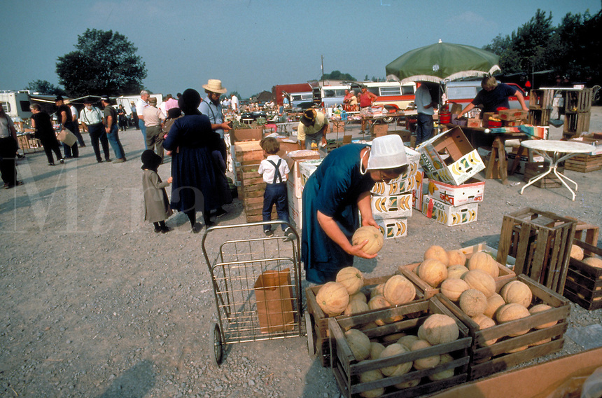 At the community outdoor market , Amish, including young woman shop for produce. Amish. Kidron Ohio United States market.
