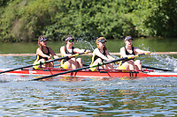 Race: 6  Event: Aspirational Academic 4-<br /> Crew: 120  Club: York Univ<br /> <br /> Henley Women's Regatta 2018<br /> Friday<br /> <br /> To purchase this photo, or to see pricing information for Prints and Downloads, click the blue 'Add to Cart' button at the top-right of the page.
