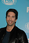 David Schwimmer - American Crime Story: The People Vs OJ Simpson - FOX 2015 Programming Presentation on May 11, 2015 at Wolman Rink, Central Park, New York City, New York.  (Photos by Sue Coflin/Max Photos)