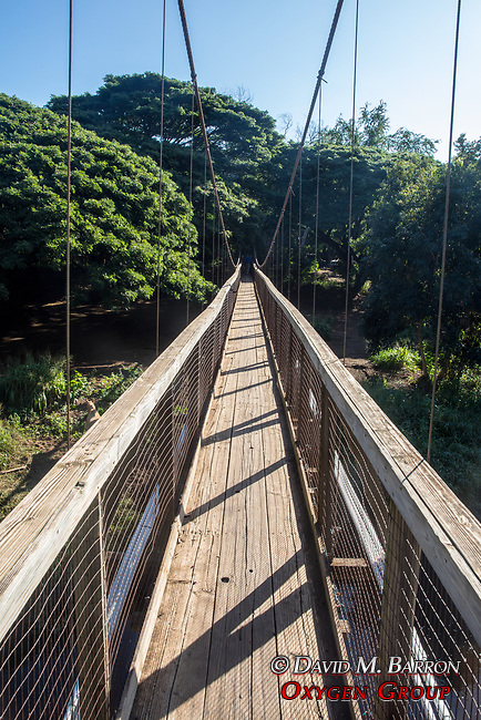 Walking Bridge Over Menehune Ditch
