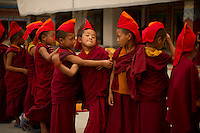 Student Buddhist Lama Monks from Sikkim, queuing up for the Losar ceremony