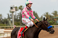 ARCADIA, CA  JUNE 16: #1 Thirteen Squared, ridden by Tyler Baze, in the post parade of the Summertime Oaks (Grade ll) on June 16, 2018 at Santa Anita Park in Arcadia, CA. (Photo by Casey Phillips/Eclipse Sportswire/Getty Images)