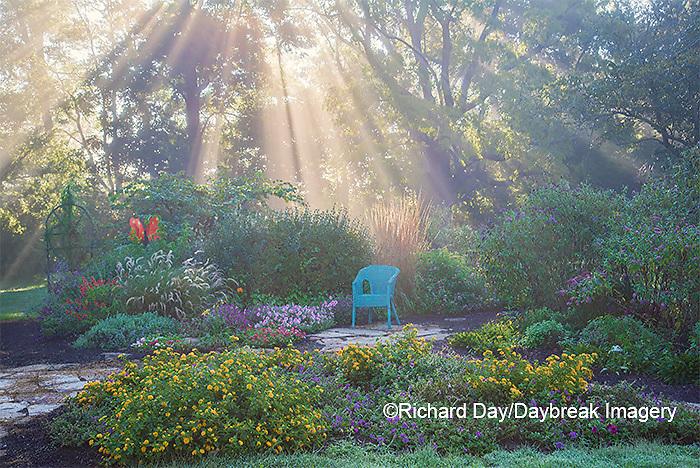 63821-23720 Sun rays in fog in flower garden, Marion Co., IL