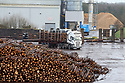 TO GO WITH STORY BY Arthur Beesley. DATE 8 FEB 2018. Fresh logs arrive to the log yard of Balcas Timber Ltd,  Laragh, Ballinamallard, Enniskillen Co. Fermanagh, Northern Ireland. Photo/Paul McErlane