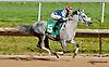 Dhaan winning at Delaware Park on 7/8/13