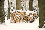 Winter woodpile with snow.