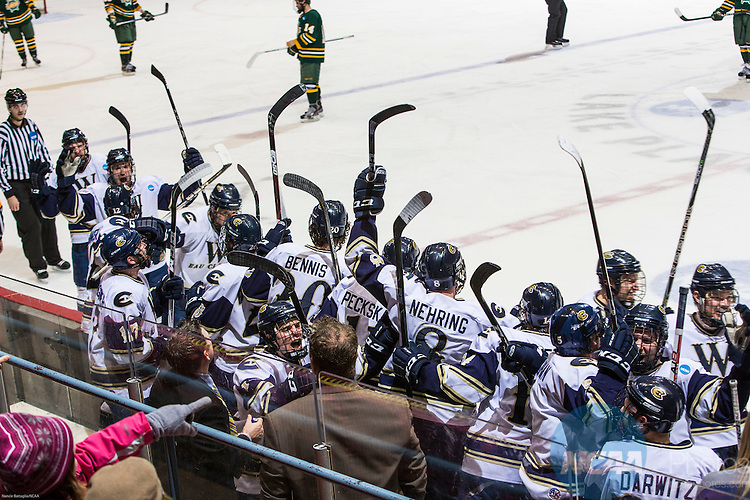 16 MAR 2013:  The Wisconsin Eau Claire team bench celebrates their 5th goal during the Division lll Men's Ice Hockey Championship held at the Olympic Center in Lake Placid, NY. Wisconsin Eau Claire defeated Oswego State 5-3 for the national title. Nancie Battaglia/NCAA Photos