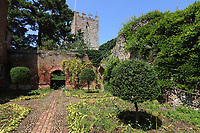 The gardens and grounds at Greys Court, Henley - a National Trust Property - now re-opened to the public after the 3 months of coronavirus lockdown. Henley on June 23rd 2020<br /> <br /> Photo by Keith Mayhew
