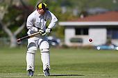 Cricket - WTTU v Wanderers