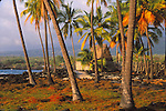FB-S168  4x6 postcard.  Back faded photo.  Hawaii