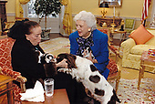 First lady Barbara Bush and Mrs. Martha Graham with Mrs. Bush's dog Millie and her pups in the White House residence in Washington, DC on March 30, 1989.<br /> Mandatory Credit: Carol T. Powers / White House via CNP