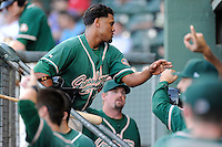 05.07.2014 - MiLB Greensboro vs Greenville