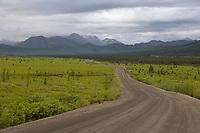 Denali Park road near Teklanika, Denali National Park, Alaska