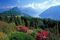 CHE, Schweiz, Tessin, Carona: Botanischer Garten San Grato mit Blick auf Monte San Salvatore und den Laguner See | CHE, Switzerland, Ticino, Carona: Botanical Park San Grato and view at Monte San Salvatore and Lago Lugano