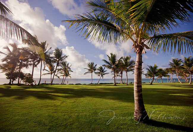 The sun is setting over a field of green grass and palm trees on the coast of the Dominican Republic.