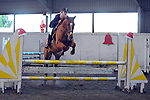 13/12/2014 - Class 5 - Cashjumping - Norton Heath equestrian centre