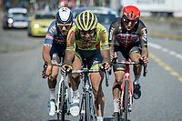 final escape group with Baptiste Planckaert (BEL/Bingoal-WB), Stan Dewulf (BEL/Lotto-Soudal) and later race winner Gianni Vermeersch (BEL/Alpecin-Fenix)<br /> <br /> Antwerp Port Epic 2020 <br /> One Day Race: Antwerp to Antwerp 183km; of which 28km are cobbles and 35km is gravel/off-road<br /> Bingoal Cycling Cup 2020