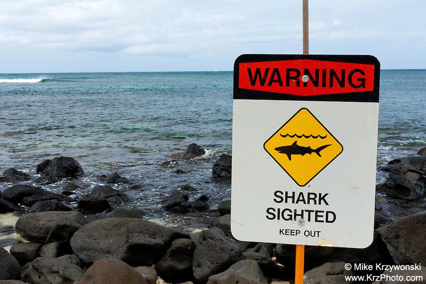 """""""Warning - Shark Sighted - Keep Out"""" sign at Leftover's Surf Spot, North Shore, O'ahu"""