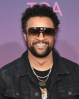 05 August 2019 - West Hollywood, California - Shaggy. ABC's TCA Summer Press Tour Carpet Event held at Soho House.   <br /> CAP/ADM/BB<br /> ©BB/ADM/Capital Pictures