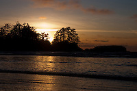 Silhouetted trees and the beach at Tofino . Vancouver island, British Colombia, Canada.