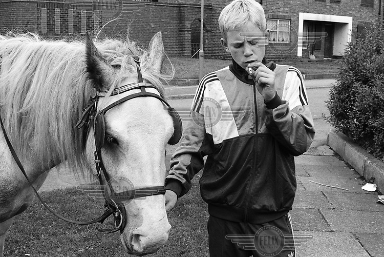 Boy with the horse his mother bought him for 50 GBP.