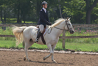 14 to 18 English Equitation