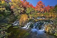 Changing seasons at Cascade Springs.  Wasatch Mountains, Utah.  September 2012.