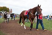 """5th David L. """"Zeke"""" Ferguson Stakes - Gibralfaro"""
