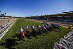 November 1, 2019: Structor, ridden by Jose Ortiz, wins the Breeders' Cup Juvenile Turf on Breeders' Cup World Championship Friday at Santa Anita Park on November 1, 2019: in Arcadia, California. Carlos Calo/Eclipse Sportswire/CSM