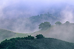 Morning light on hills and clouds along Foxen Canyon Road, Santa Barbara County, California