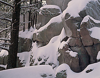 Devil's Lake State Park, WI<br /> Fresh snow blankets the boulders &amp; trees on the East Bluff Trail