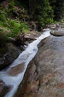 Stream Detail at Denny Creek Waterslides, Mt. Baker-Snoqualmie National Forest, Washington, US