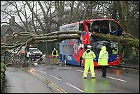 BNPS.co.uk (01202)558833<br /> Pic: CorinMesser/BNPS<br /> <br /> Passengers had a miraculous escape when a large tree crashed through the roof of a double decker bus.<br /> <br /> The 40ft tree was blown over in Storm Erik and fell through the front of the X6 Morebus in Poole, Dorset.<br /> <br /> Luckily, there were only 5 oassengers on the bus and it is believed the front seats on the upper deck were empty at the time.