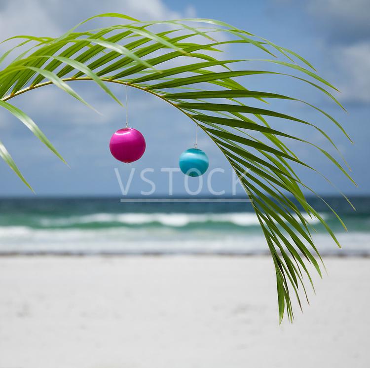 USA, Florida, St. Pete Beach, Christmas ornaments hanging on palm leaf