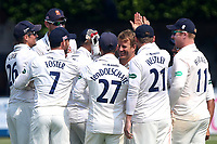 Neil Wagner of Essex is congratulated by his team mates after taking the wicket of Jonathan Trott during Essex CCC vs Warwickshire CCC, Specsavers County Championship Division 1 Cricket at The Cloudfm County Ground on 21st June 2017