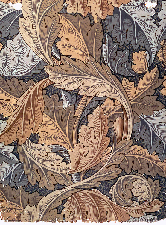 'Acanthus', wallpaper designed by William Morris, 1875. <br /> Credit: Stapleton Historical Collection / HIP / TopFoto