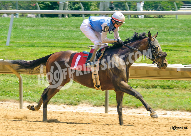 Tempietto winning at Delaware Park on 7/18/16
