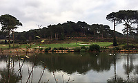 BNPS.co.uk (01202 558833)<br /> Pic:  PeterNorrie/BNPS<br /> <br /> Vanished...the view from Peter Norrie's garden after the trees were felled.<br /> <br /> A prestigious golf club that axed 34 protected trees has been ordered to plant new specimens in their place to compensate for the act of 'environmental vandalism'. <br /> <br /> Officials at Parkstone Golf Club in Poole, Dorset, must grow 13 'advanced' specimens of at least 10ft in height in the same spot the mature pine trees once stood.<br /> <br /> The club, that counts Harry Redknapp as a member, fell foul of a 56-year-old Tree Preservation Order (TPO) covering the 70ft tall trees when it cut them down in December 2018.<br /> <br /> The owners of £1m homes that back on to the course were furious as they said the trees provided shelter from the wind and privacy from golfers playing the 1st and 2nd holes.