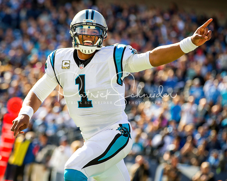 Carolina Panthers vs. Tennessee Titians, during their NFL game Sunday afternoon November 15, 2015  at Nissan Stadium in Nashville, TN.<br /> <br /> Charlotte Photographer: PatrickSchneiderPhoto.com