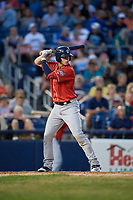New Hampshire Fisher Cats Riley Adams (22) at bat during an Eastern League game against the Trenton Thunder on August 20, 2019 at Arm & Hammer Park in Trenton, New Jersey.  New Hampshire defeated Trenton 7-2.  (Mike Janes/Four Seam Images)