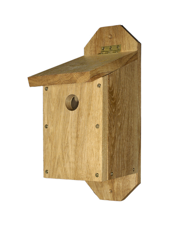 Bird Box. Common style of wooden bird box for common garden species.