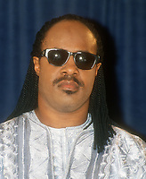 Stevie Wonder, 1994, Photo By John Barrett/PHOTOlink