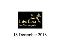 Interflora - 18 December 2018