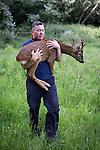 "© Joel Goodman - 07973 332324 . Stockport , UK . Veterinary surgeon SIMON CONSTABLE carries the tranquilised deer to a safe place in Reddish Vale Country Park before bringing him round . A wild deer which was discovered in a park by the busy Manchester Road in Stockport has been rescued after three days . The park was closed and locked by Stockport Council officials on Monday 24th June after the young male started bolting across the playing field and playground and butting its head and antlers against railings . But with the gates locked , the young animal could not escape . For three days local people came out to watch the deer from the fence as it hid in bushes around the edge of the park , occasionally venturing out across the playing pitch and in the direction of the busy A626 road . The landlord at "" The Hind's Head "" pub opposite , Stuart Kirkham , a Manchester United fan , named the beast "" Ronaldo "" because of its red colouring . After three days , with no hope of escape under its own steam and with the park still closed , the RSPCA and council brought in a veterinary surgeon to help . The animal was tranquilised and driven to nearby Reddish Vale Country Park , where he was brought round and released back in to the wild . Photo credit : Joel Goodman"