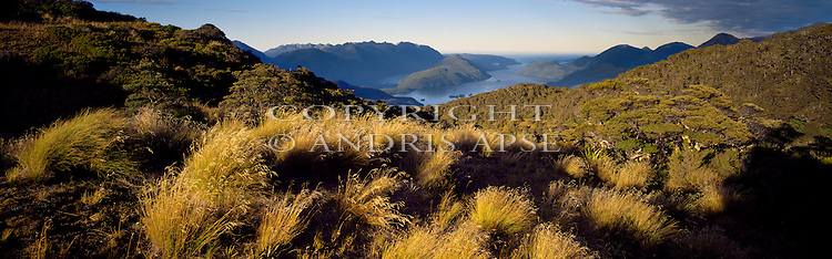 Dusky Sound. Fiordland National Park. New Zealand.