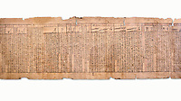 "Ancient Egyptian Book of the Dead papyrus - Spell 33 for keeping snakes away, Iufankh's Book of the Dead, Ptolomaic period (332-30BC).Turin Egyptian Museum. White Background<br /> <br /> the spell reads ' O Rerek! Move not! Behold Geb and Shu have risen against you, for you have eaten a mouse, the abomination of Re"" you have crunched the bones of a putrified cat""<br /> <br /> The translation of  Iuefankh's Book of the Dead papyrus by Richard Lepsius marked a truning point in the studies of ancient Egyptian funereal studies."