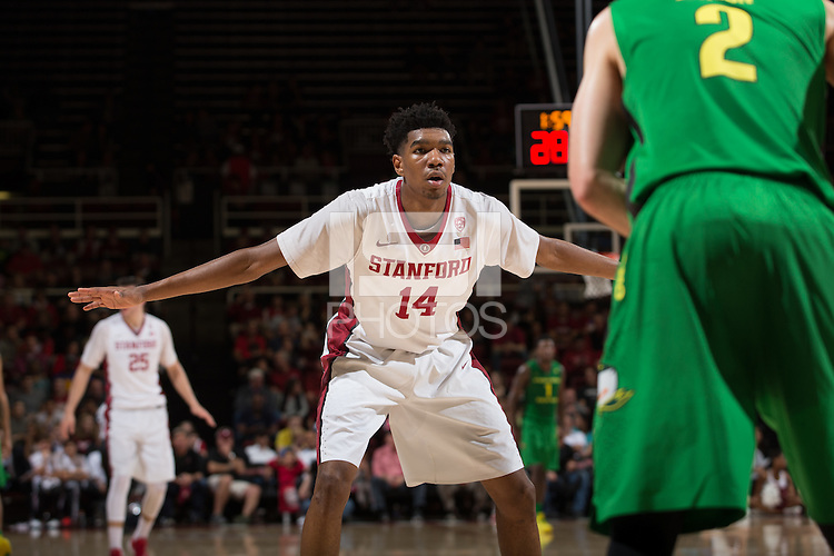 STANFORD, CA -  Saturday, February 13, 2014: Stanford beats Oregon 76-72 at Maples Pavilion.