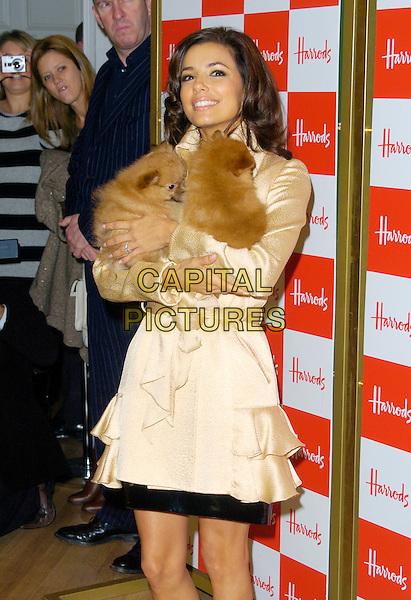 EVA LONGORIA.opens Harrods Winter Sale, Knightsbridge,.London, England, 28th December 2006..half length cream silk satin belted coat by Jasmine Di Milo holding animals fluffy dogs.CAP/CAN .©Can Nguyen/Capital Pictures
